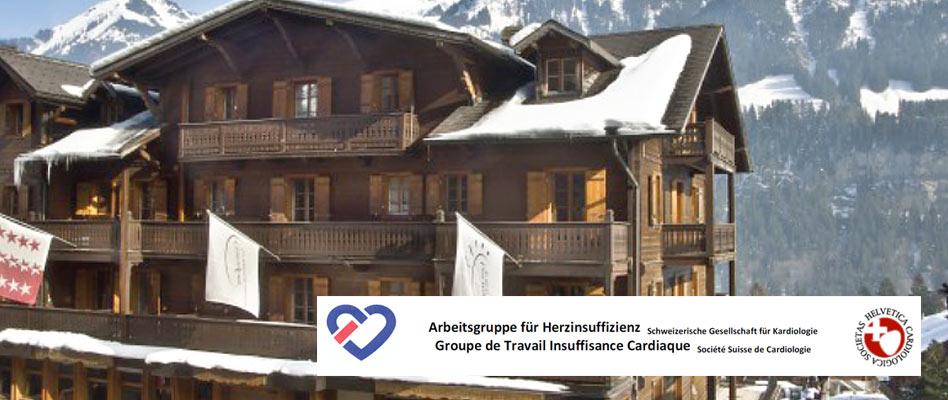 20th Winter-Meeting Heart Failure Working Group